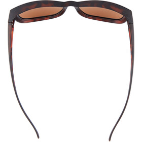 Alpina Overview II P Gafas, negro/marrón